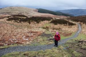 Walker on the restored footpath on Gowbarrow Fell